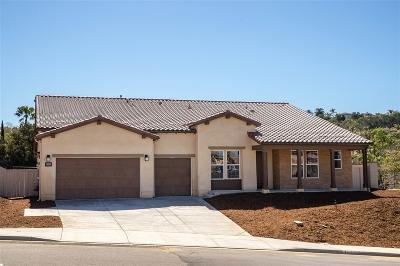 Escondido Single Family Home For Sale: 1301 Vista