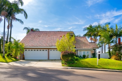 Solana Beach Single Family Home For Sale: 1063 Via Mil Cumbres