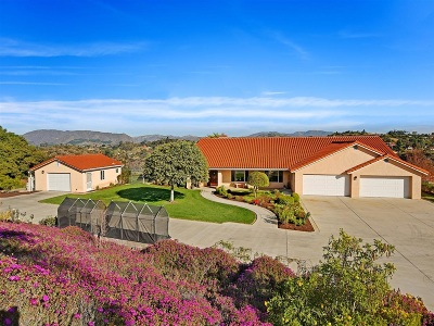 Fallbrook Single Family Home For Sale: 290 Patton Oak Road