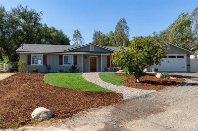 Single Family Home For Sale: 1115 S S Stage Coach Ln