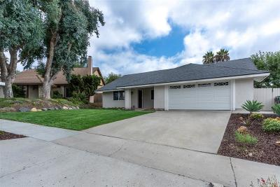 Oceanside Single Family Home For Sale: 4179 Terry