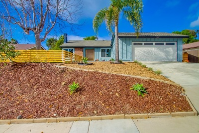 Encinitas Single Family Home For Sale: 316 Firtree Ct