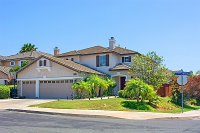 Chula Vista Single Family Home For Sale: 1052 Camino Espuelas
