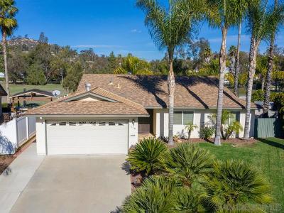 Escondido Single Family Home For Sale: 1110 La Mirada Ave