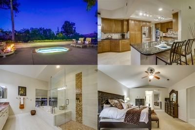 Poway Single Family Home For Sale: 13874 Lake Poway Rd