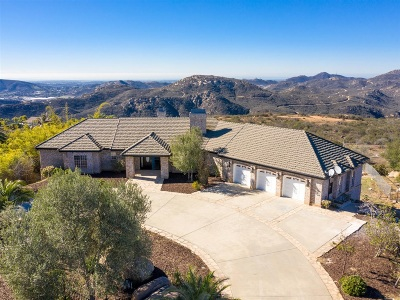 Escondido Single Family Home For Sale: 28039 High Vista Dr