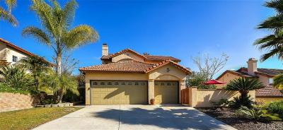 San Marcos Single Family Home For Sale: 1324 Avenida Azul