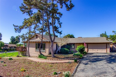 Fallbrook Single Family Home For Sale: 635 Golden Road