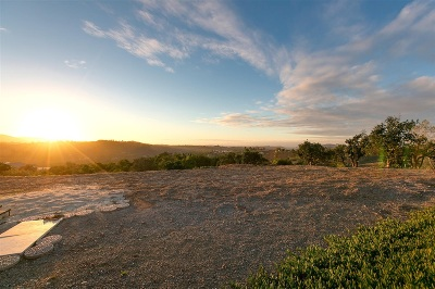 Valley Center Residential Lots & Land For Sale: 31210 Manzanita Crest Rd #1