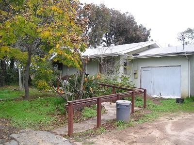 Single Family Home For Sale: 247 W Kalmia St