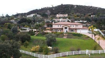 San Diego County Single Family Home For Sale: 1695 La Force Road