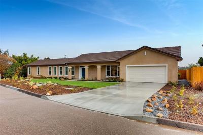 Fallbrook Single Family Home For Sale: 134 Kaden Court