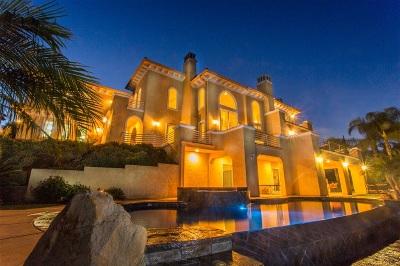 Escondido Single Family Home For Sale: 2834 Paseo Del Bianco