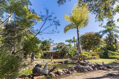 Oceanside Single Family Home For Sale: 1675 Avenida Andante