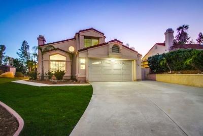 Escondido Single Family Home For Sale: 1525 Via Salerno