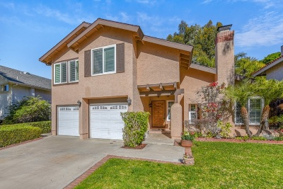San Diego Single Family Home For Sale: 3272 Lahitte Ct