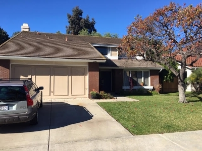 Encinitas Single Family Home For Sale: 246 Via Tavira