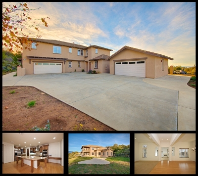Valley Center Single Family Home For Sale: 27154 Tumbleweed Trl
