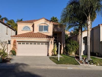 Oceanside Single Family Home For Sale: 1528 Via Otano