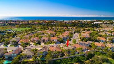 Carlsbad Single Family Home For Sale: 1072 Goldeneye Vw