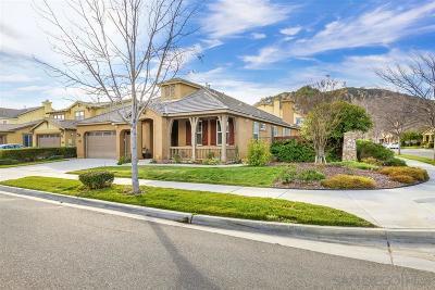Escondido Single Family Home For Sale: 3078 Burnet Dr