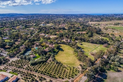 Rancho Santa Fe Single Family Home For Sale: 6025 El Montevideo