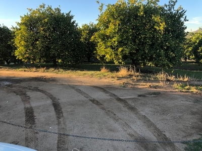 Riverside County Residential Lots & Land For Sale: Los Ranchos Circle #015