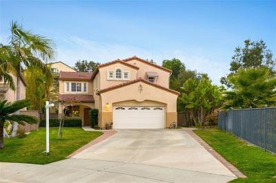 Carlsbad Single Family Home For Sale: 3328 Rancho Carrizo