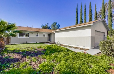 Santee Single Family Home For Sale: 9902 Halberns Blvd