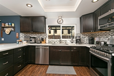 Escondido Single Family Home For Sale: 2081 Caraway Street
