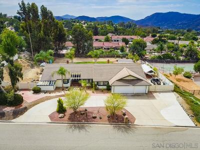 Escondido Single Family Home For Sale: 1519 Cortina Cir