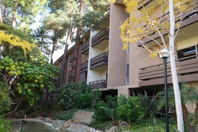Mission Valley Rental For Rent: 1621 Hotel Circle South #E331