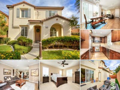 Carlsbad Single Family Home For Sale: 3581 Summit Trail Court