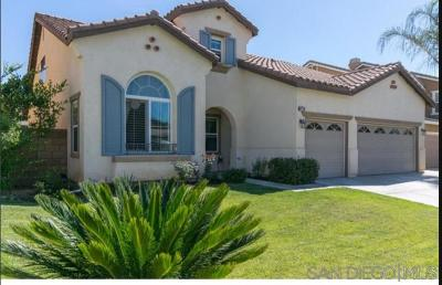 Murrieta, Temecula Single Family Home For Sale: 31723 Wintergreen Way