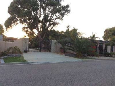 Carlsbad Single Family Home For Sale: 2459 Tuttle Street
