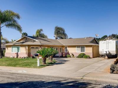 Escondido Single Family Home For Sale: 1250 Portola Ave