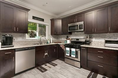 Oceanside Single Family Home For Sale: 913 Vine Street