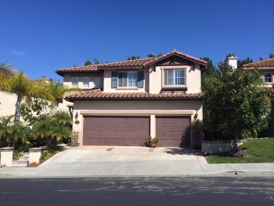 Carlsbad Single Family Home For Sale: 1426 Turquoise Dr