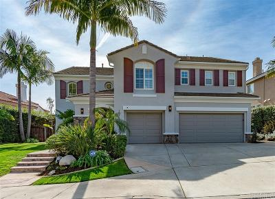 San Diego Single Family Home For Sale: 10719 Santa Tomasa