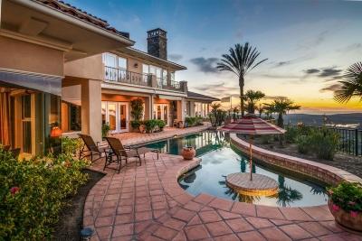 Rancho Santa Fe Single Family Home For Sale: 17828 Punta Del Sur