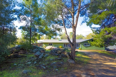 Single Family Home For Sale: 529 Amigos