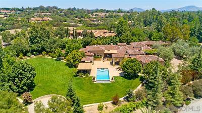 Rancho Santa Fe Single Family Home For Sale: 17222 Via Recanto