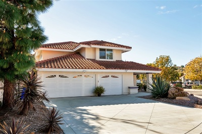 Encinitas Single Family Home For Sale: 358 Via Andalusia