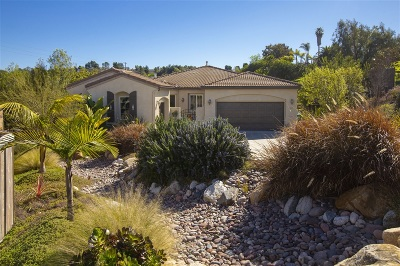 Oceanside Single Family Home For Sale: 322 Mission View Way