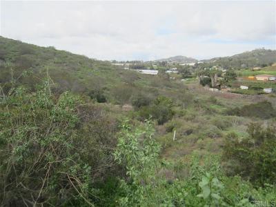 San Marcos Residential Lots & Land For Sale: W La Cienega Road Par 3 Tr 4843 #PAR 3 TR