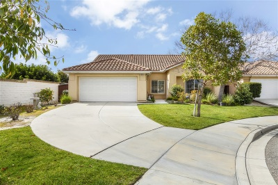 Single Family Home For Sale: 3873 Arista Way