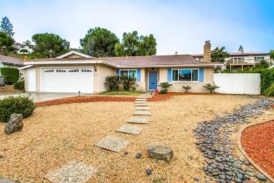 Escondido Single Family Home For Sale: 1301 Portola Ave