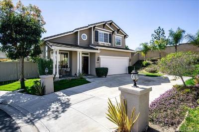 Carlsbad Single Family Home For Sale: 3205 Camino Cabrillo