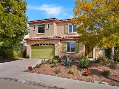 Carlsbad Single Family Home For Sale: 3625 Strata Dr