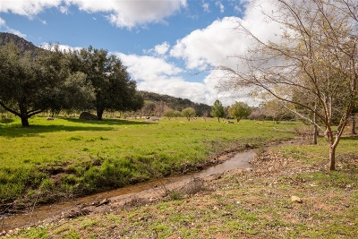 San Diego County Residential Lots & Land For Sale: 18173 Lyons Valley Rd